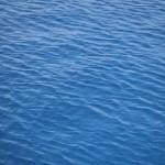 """Conferência """"Ordenamento do Espaço Marítimo e Ambiente Marinho"""""""