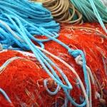 Redução drástica das possibilidades de pesca em 2015