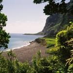 Comissão relança o Observatório do Turismo Virtual