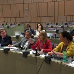 Flexibilização dos auxílios estatais com finalidade regional