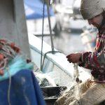 Comissão das Pescas dá luz verde à renovação das frotas nas RUP